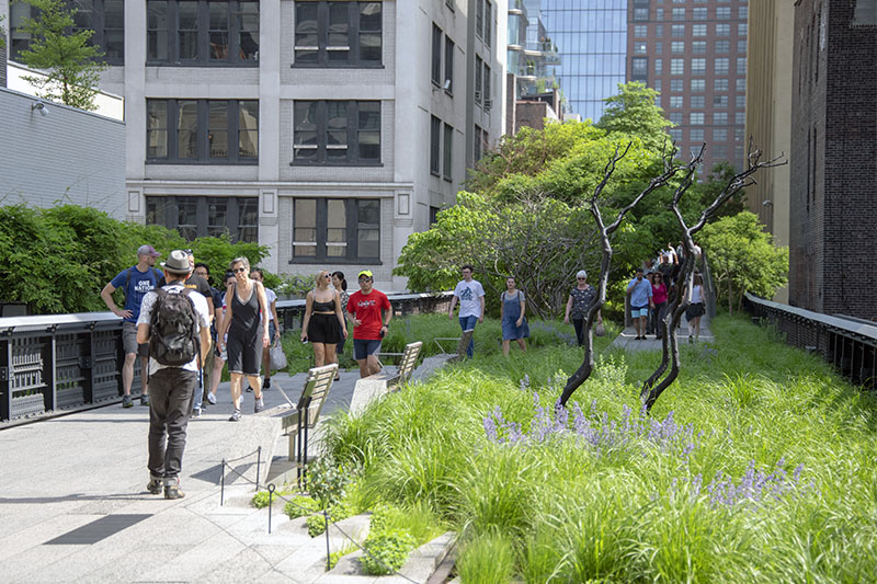 The High Line in New York City, one of the best travel experiences to have in the Big Apple
