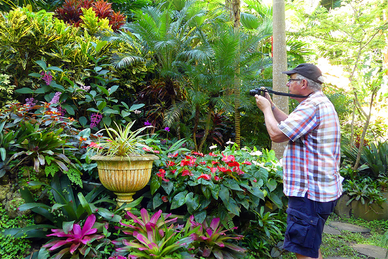 A man taking a photo in Huntes Gardens, one of the popular things to do in Barbados