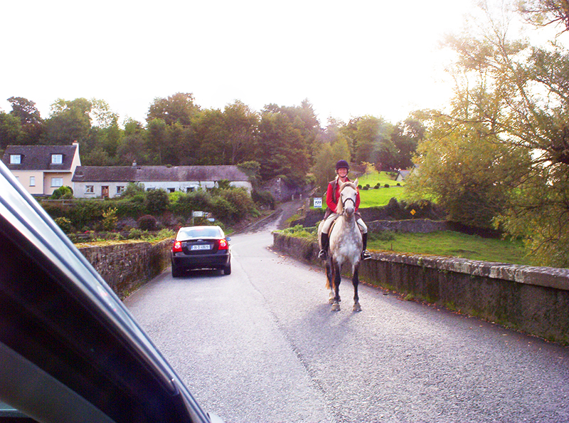 A horse and rider by cars on a road near Kilkenny, one of the great day trips from Dublin
