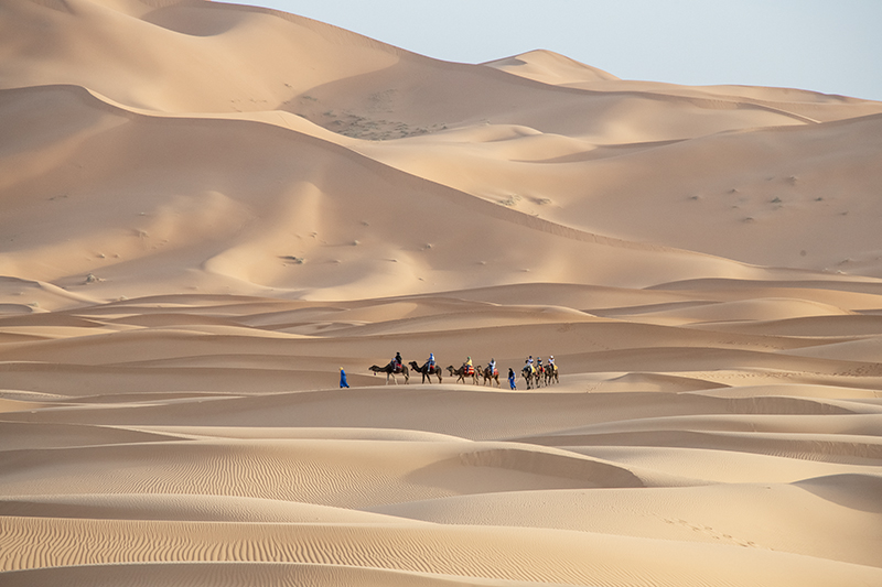 people on a camel trek - one of the things to do In Morocco