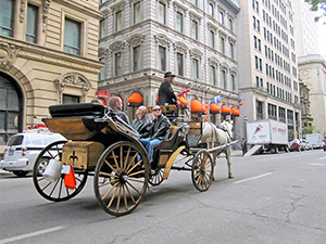a horse drawn carriage