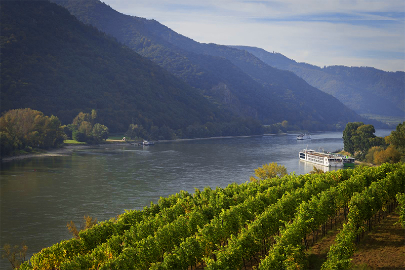 a ship docked at a vineyard on a luxury river cruise