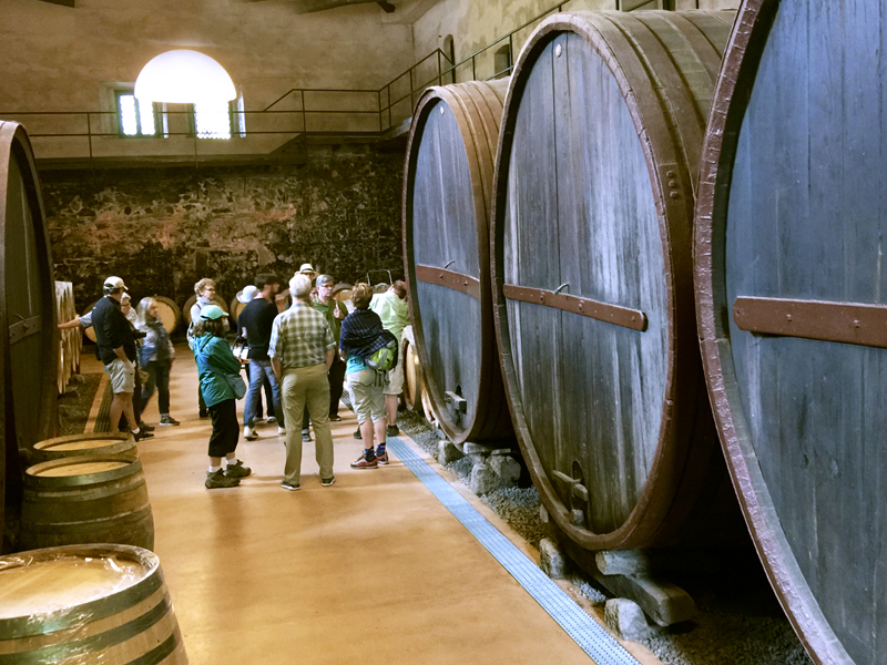 people by large barrels at wineries in sicily