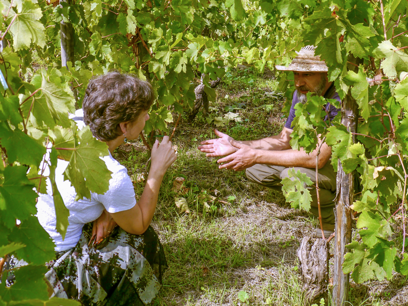a woman talking with a winemaker at wineries in sicily