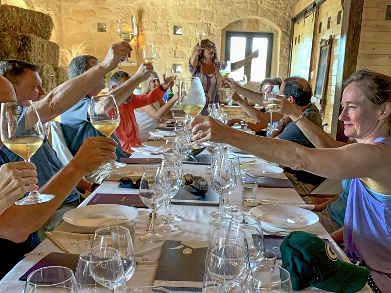 people tosting with wine at wineries in sicily