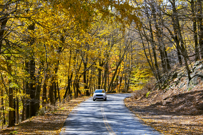 car on road with autumn leaves in the Hudson Valley