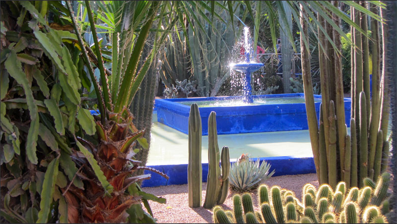 a blue fountain surrounded by cacti