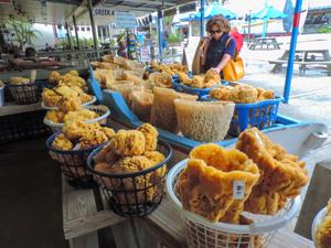 a woman buying sponges in Tarpon Springs