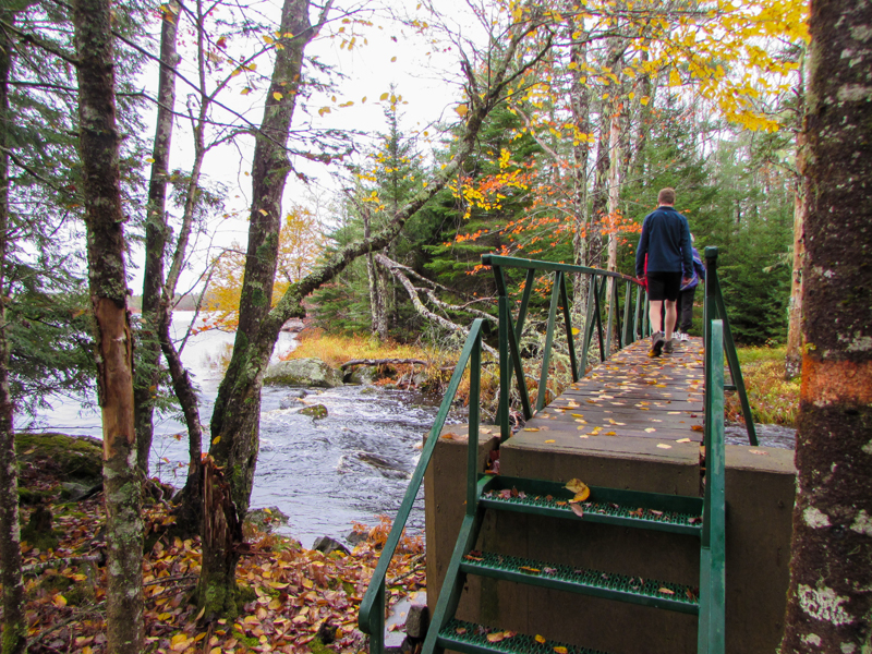 people walking across a small bridge over a stream in the forest