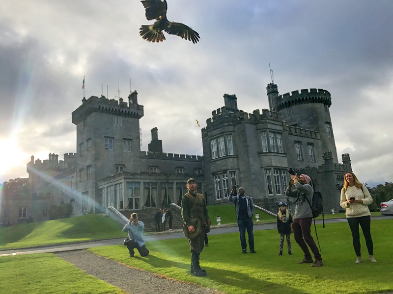 a falconer at a castle on Ireland's west coast