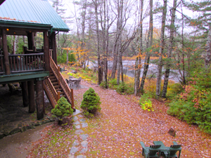 a view of the woods and river from a balcony at the Trout Point Lodge