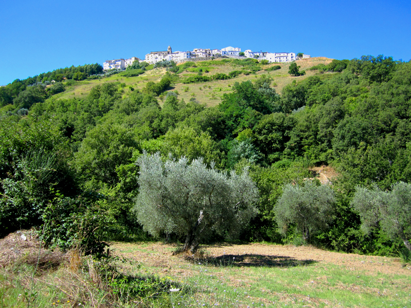 a distant view of Accettura, the hometown of my ancestral family in Italy
