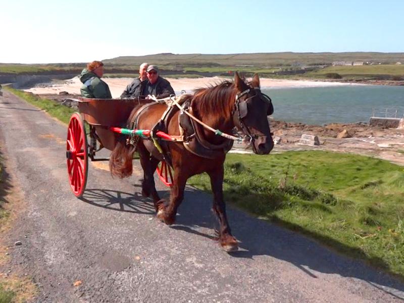 people in a horse cart on the Aran Island, Ireland