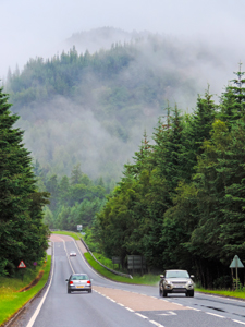 cars on a road in a forest, seen on a Highlands of Scotland road trip