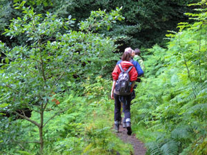 hikers walking through the woods - one of the attractions of the Lake District