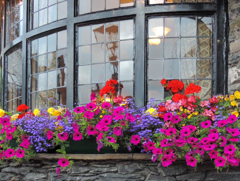 beautiful flowers in a restaurant - one of the attractions of the Lake District