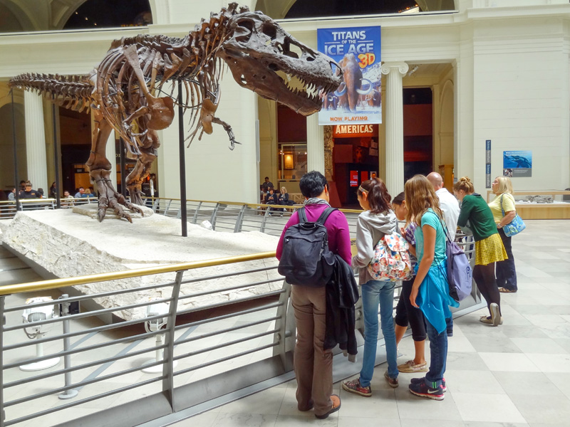 people by a dinosaur skeleton in a museum, one of the things to do in Chicago