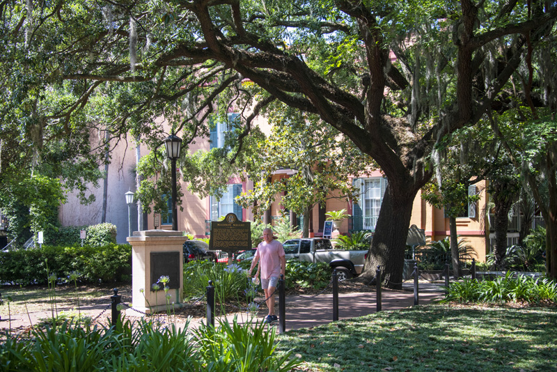 a man walking through a park, one of the things to do in Savannah