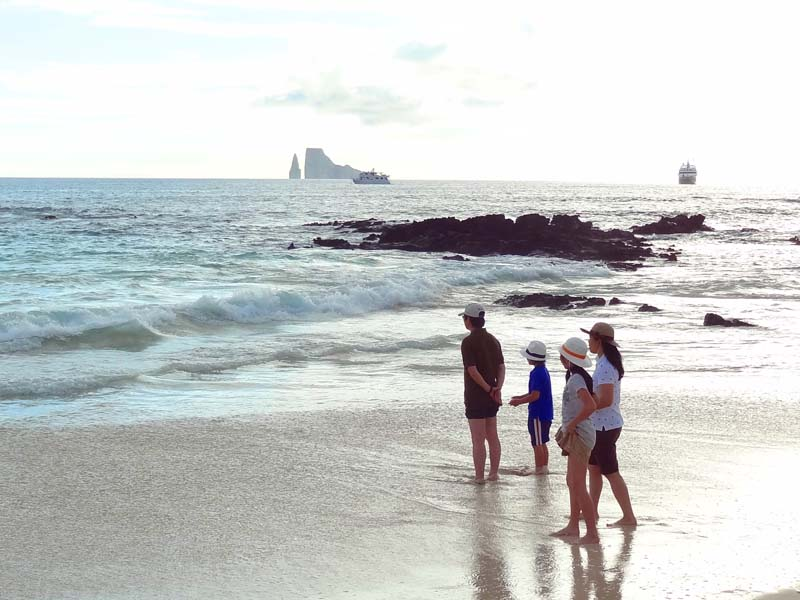 a family on a beach looking at the ocean