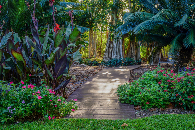 a walkway through woodlands in one of Florida's botanical gardens