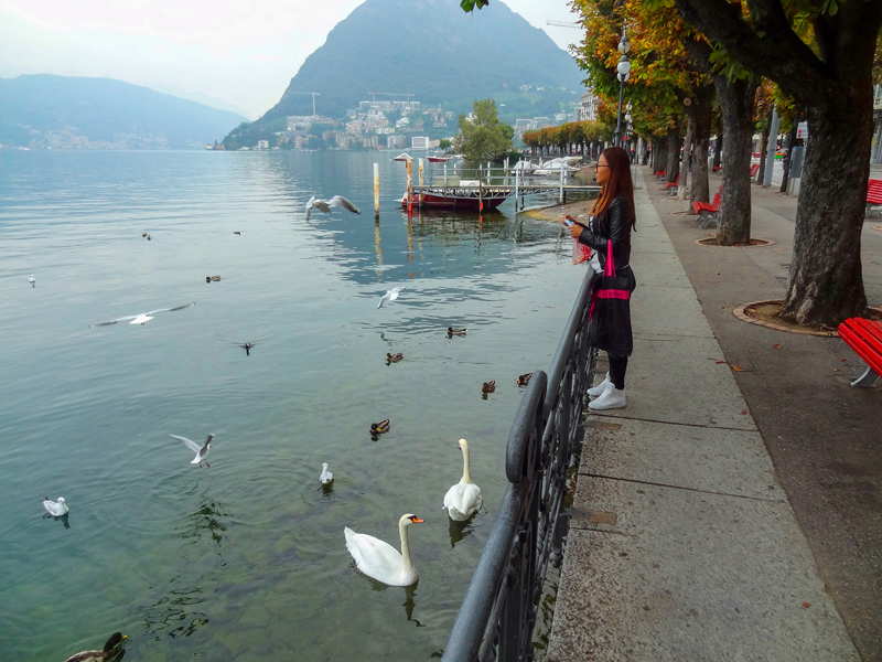 a woman feeding swans, one of the things to do in Lugano