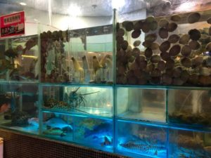 Kowloon Day 1 | Seafood market window | Never to old to travel | Gary House