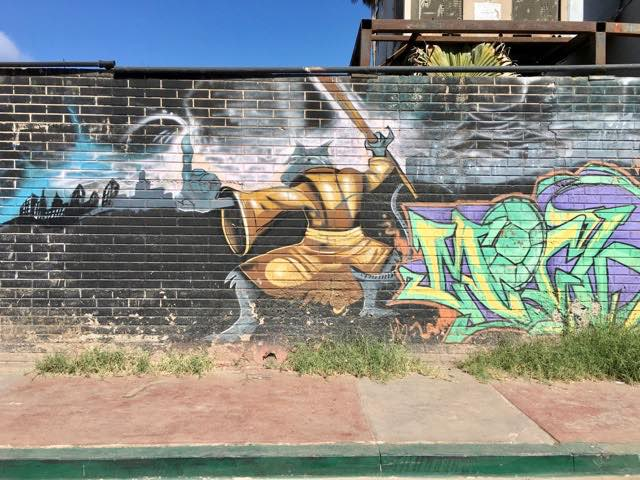tmnt-graffiti-mural-1 | Never to Old to Travel | Gary House