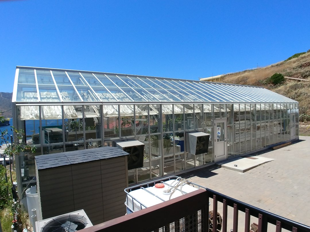 Glass house where they grow fresh produce for consumption and conduct experiments in Aquaponics.