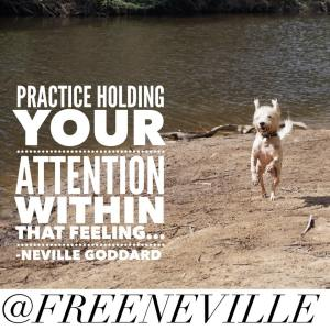 neville_goddard_feel_it_real_quote_2015