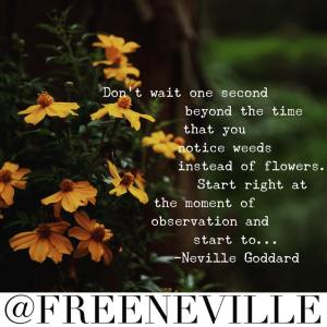 how_to_feel_it_real_neville_goddard_weed_garden