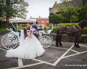 Horse and Carriage at Clontarf Castle Hotel