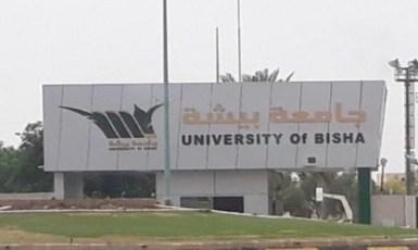 وظائف شاغرة في جامعة بيشة