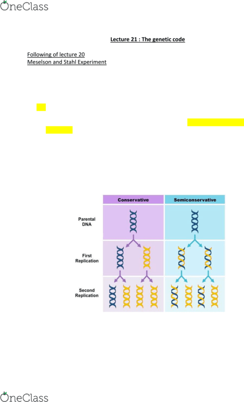 small resolution of biol 112 lecture notes lecture 21 semiconservative replication heavy strand nitrogenous basepremium