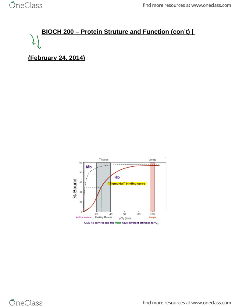hight resolution of bioch 200 protein struture and function con t