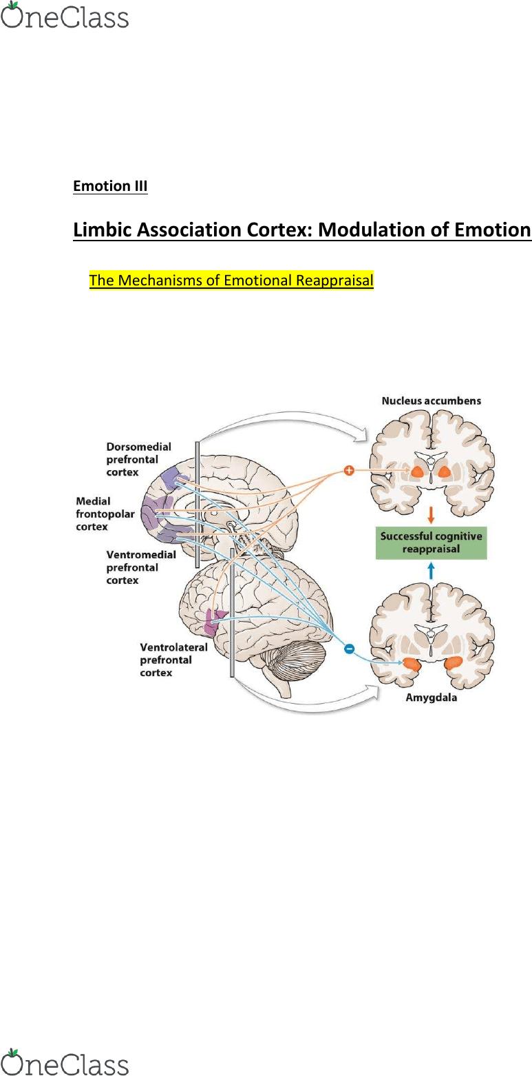 hight resolution of neur2p37