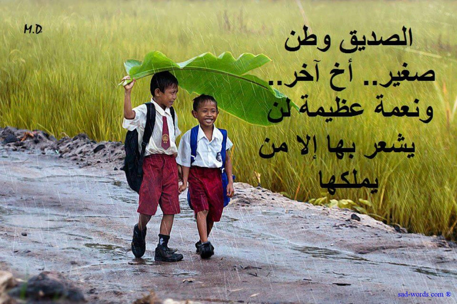 اجمل كلام في الصداقة عبارات عن الصديق الوفي تستحق القراءة اجمل بنات