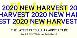 New Harvest 2020 Banner