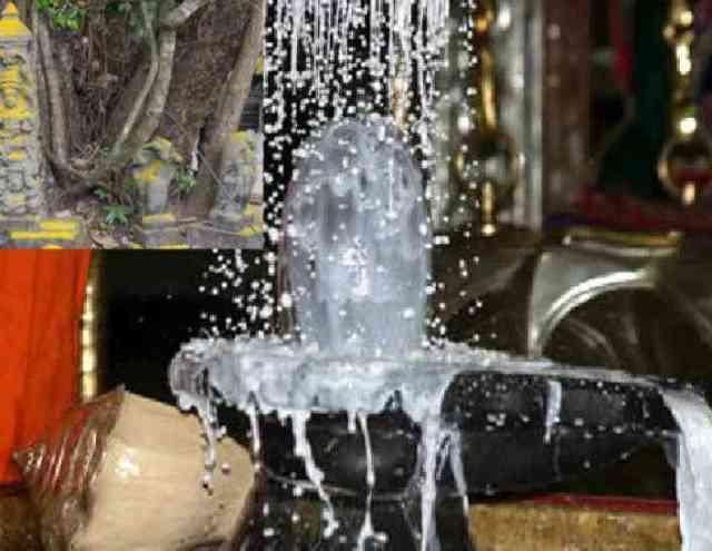 Image result for कच्चे दूध से भगवान शिव