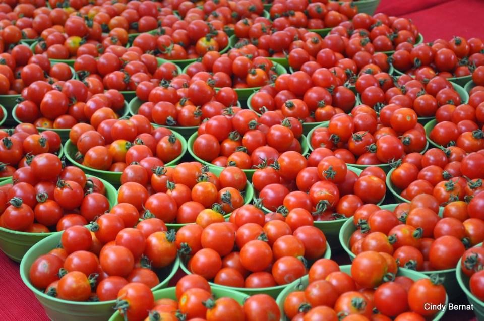 Success Story- Farmer Becomes Millionaire From Tomato Cultivation - टमाटर की खेती से लखपति बन गया किसान, आप भी अपना सकते हैं ये तरीका | Patrika News