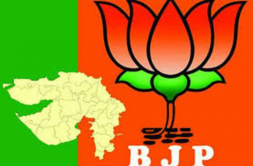 BY ELECTION: BJP officials to reach Dang assembly today