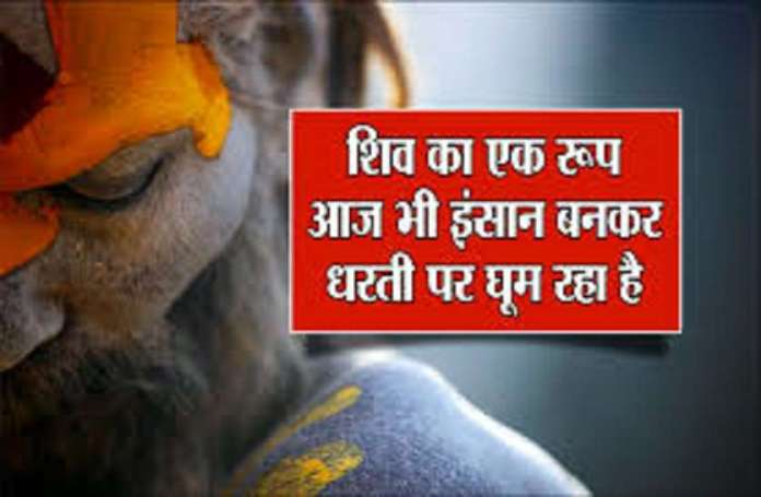 HARIDWAR KUMBH 2021: know all the things about Aghori world