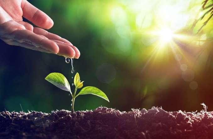 पर्यावरण व प्रकृति बचाएं