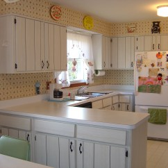 Cost Of Refacing Kitchen Cabinets Drawer Hardware Popular Cabinet Styles In The 70's, 80's, And 90's ...