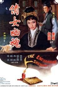 วิญญาณรักปีศาจสาว The Enchanting Shadow (1960)