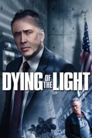 ปฏิบัติการล่า เด็ดหัวคู่อาฆาต Dying of the Light (2014)