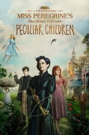 บ้านเพริกริน เด็กสุดมหัศจรรย์ Miss Peregrine's Home for Peculiar Children (2016)