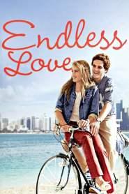 รักนิรันดร์ Endless Love (1981)
