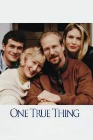 ในดวงใจแม่ เธอคือรักแท้ One True Thing (1998)
