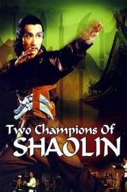 จอมโหดเส้าหลินถล่มบู๊ตึ้ง Two Champions of Shaolin (1980)