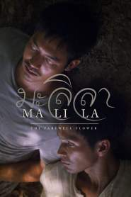 มะลิลา Malila: The Farewell Flower (2017)